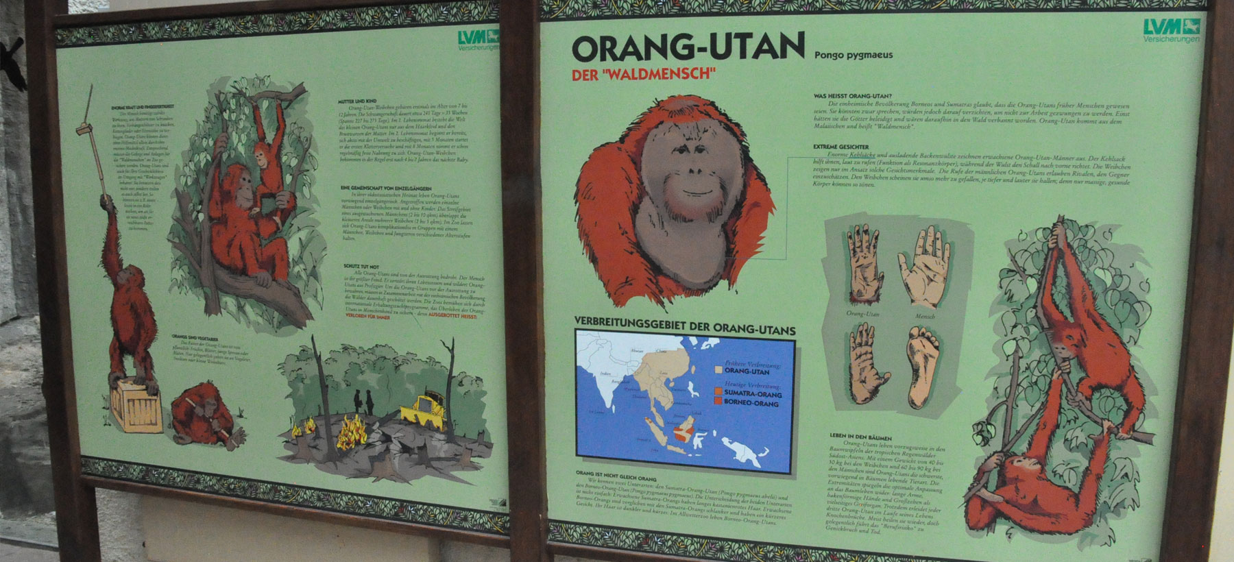 examples of Zoo signage